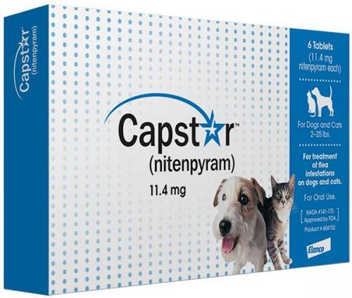 Capstar Blue per tab<br>$5.87